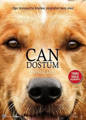 Can Dostum 1  Full HD İzle